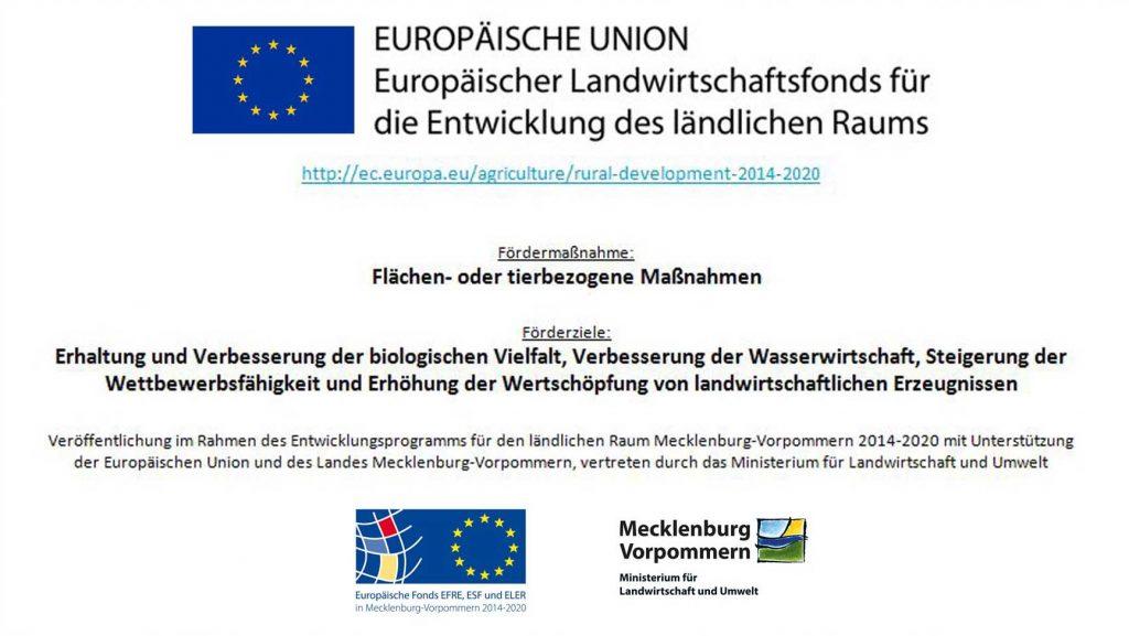 EU_Foerderung_1